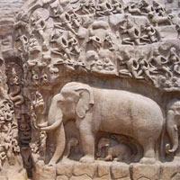 Trichy - Palani - Kodaikanal - Madurai - Kanyakumari - Rameshwaram - Thanjavur - Kumbakonam - Chidhambaram  - Tiruvannamalai - Tirupathi - Kanchipuram - Mahabalipuram - Chennai