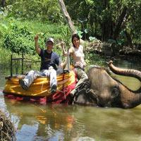 Kandy - Nuwara Eliya - Negombo - Colombo