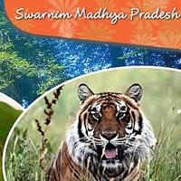 Pachmarhi - Jabalpur - Kanha - Bhandavgarh