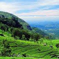 Colombo - Dambulla - Sigiriya - Kandy - Colombo