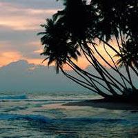 Colombo - Negombo - Habarana - Kandy - Nuwara Eliya - Bentota