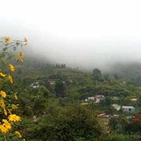 Bangalore - Mysore - Ooty - Kodai - Madurai - Rameswaram - Kanyakumari - Trivandrum