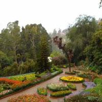 Bangalore - Mysore - Coorg - Wayanad - Coimbatore