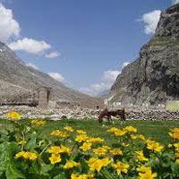Pathankot - Dalhousie - Dharamshala - Palampur - Manali - Shimla - Chandigarh