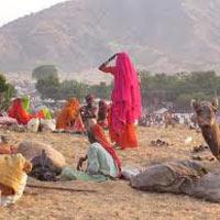 Delhi - Mandawa - Bikaner - Khuri - Jaiselmer - Jodhpur - Ranakpur - Udaipur - Pushkar - Jaipur - Ranthambore - Agra - Delhi