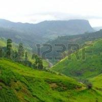 Colombo - Kandy - Nuwara Eliya - Ella - Negombo - Munneswaram