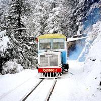 Delhi - Shimla - Sangla - Kalpa - Tabo - Kaza - Keylong - Manali