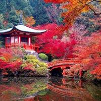 Tokyo - Hakone - Hiroshima - Kyoto - Nara - Osaka