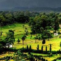 Bhopal - Sanchi - Vidisha - Bhojpur - Bhimbetka - Panchmarhi - Madai Wild Life
