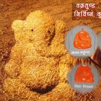 Shirdi - Shani Shingnapur - Ashtavinayaka
