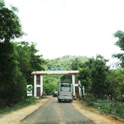 Coimbatore Travel Guide