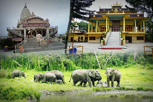 10 Best Travel Agents in Siliguri, West Bengal, India