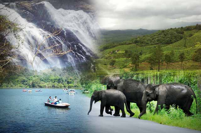 11 Places To Visit In Wayanad Top Tourist Attractions In