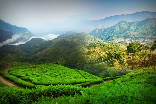 12 Arresting Hill Stations In South India