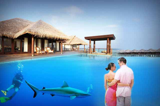 Honeymoon in maldives honeymoon places in maldives for Best places to go on your honeymoon