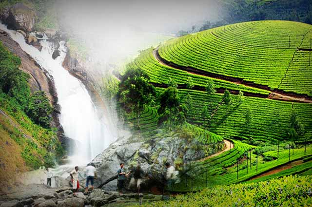 16 Places To Visit In Munnar For A Perfect Hill Town Retreat
