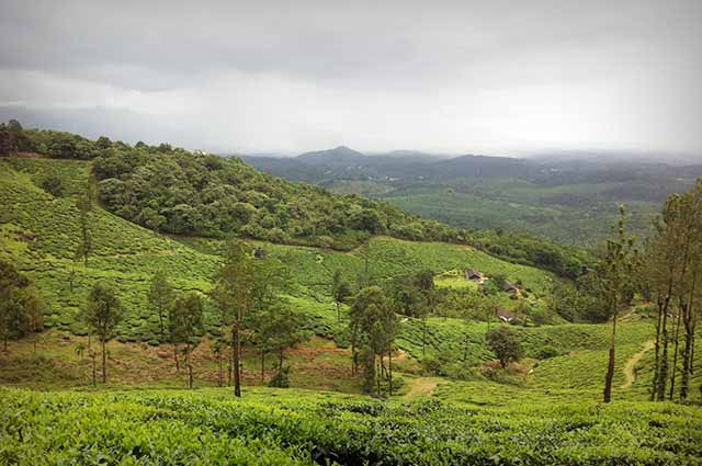Chembra Peak is well known tourist places in Wayanad