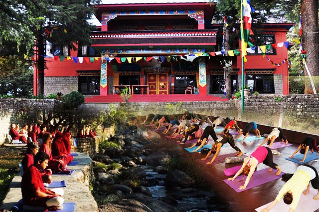 Famous And Affordable Yoga Ashram In Dharamshala