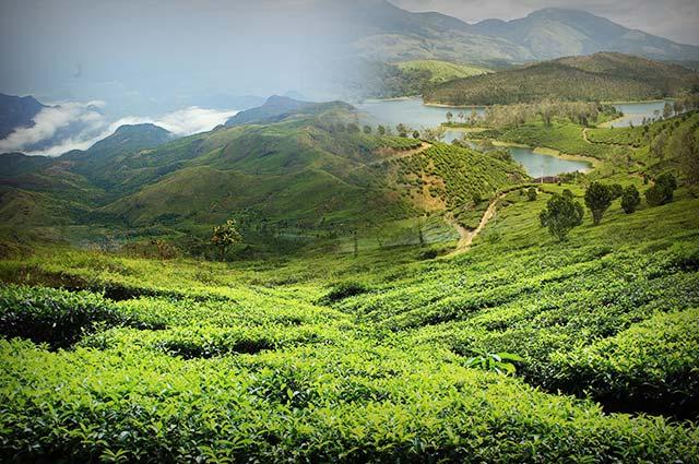 Top 10 Most Beautiful Hill Stations in Tamil Nadu