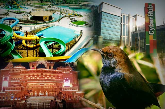 Top 10 Popular Tourist Places To Visit In Gurgaon