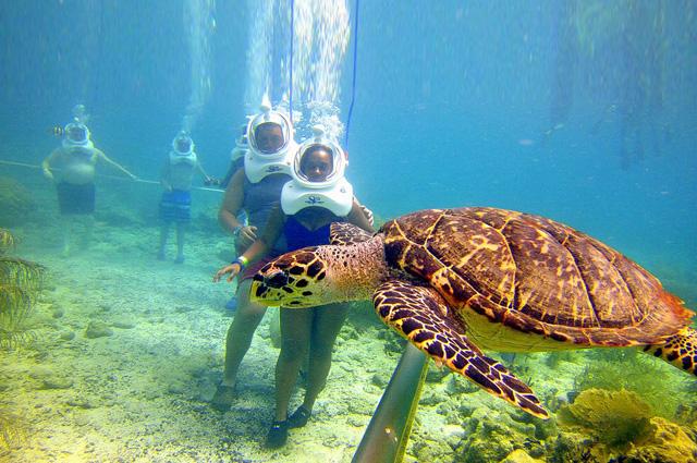 Underwater Sea Walking in Andaman