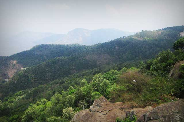 Yercaud is a tantalizing hill station in South India