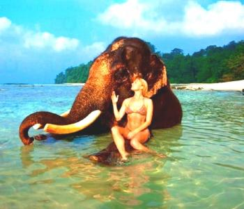 Amazing Andman with Elephata Beach