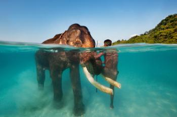 Andaman Coral Tours