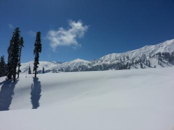 Gulmarg powder snow