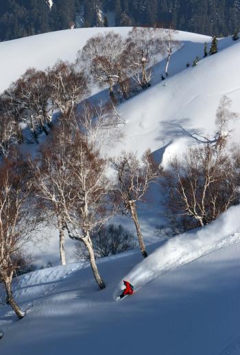 Snowboarding Gulmarg