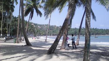 carbyn scove beach
