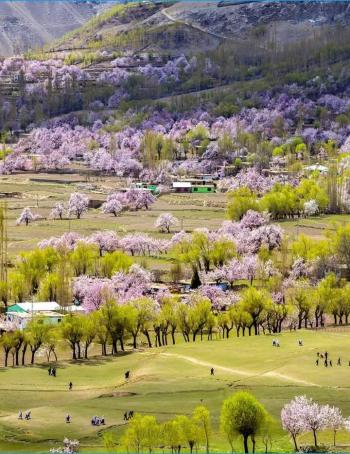 Lolab Valley kashmir