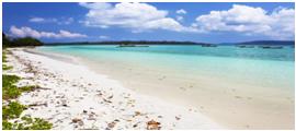 Radhanagar Beach Havelock One of the best beach in Asia