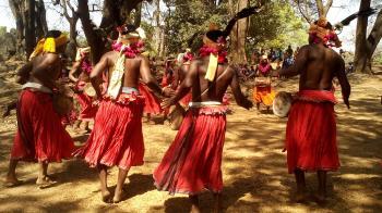 Muria Tribe Dance- Chhattisgarh