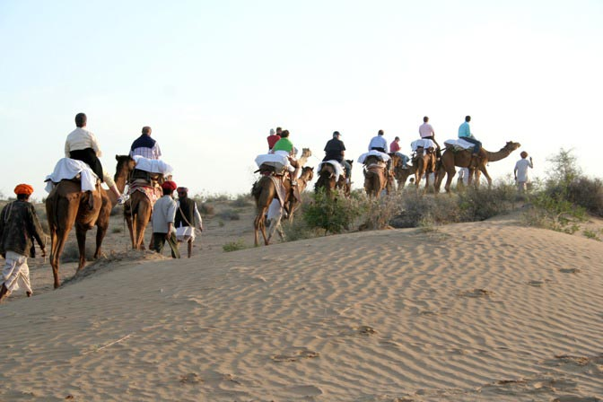Evening Camel safari