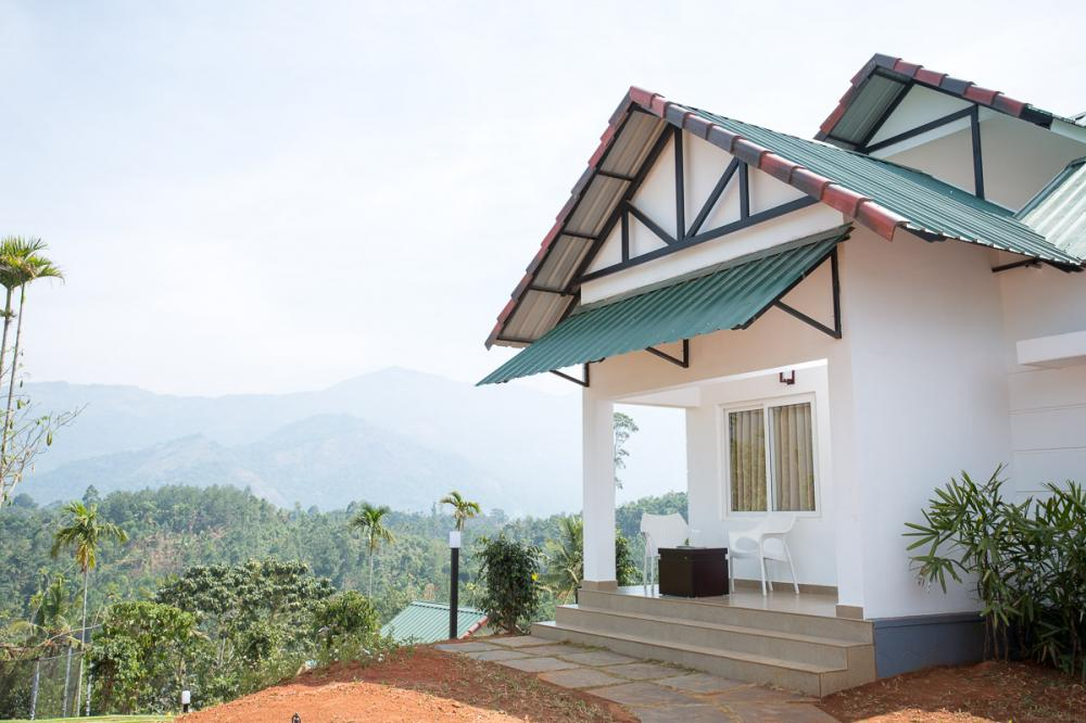 The leaf Munnar view