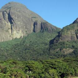Trekking in Agasthyakoodam Peak in Thiruvananthapuram