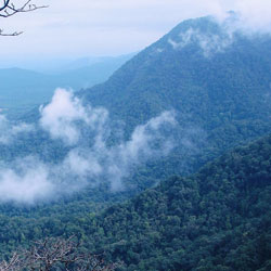 Agumbe Hill in Shimoga