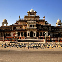 Albert Hall Museum in Jaipur