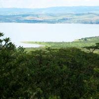 Albert Falls Dam Nature Reserve in Battlefields