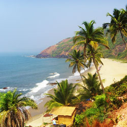 Arambol Beach in Goa City
