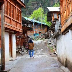 Batseri Village in Kalpa