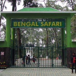Bengal Safari in Siliguri