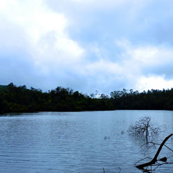 Berijam Lake in Kodaikanal