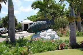 Bermuda Aquarium, Museum and Zoo (BAMZ) in Flatts Village