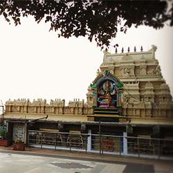 Bhadrakali Temple - Hazaribag in Hazaribag