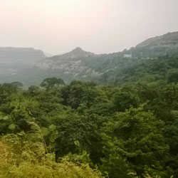 Bhimashankar Wildlife Sanctuary in Pune