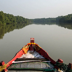 Bhitarkanika Wildlife Sanctuary in Cuttack