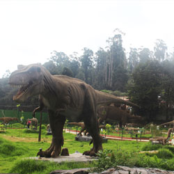 Black Thunder Amusement Park in Ooty
