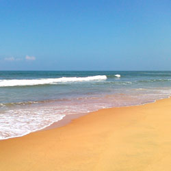 Candolim Beach in Panaji